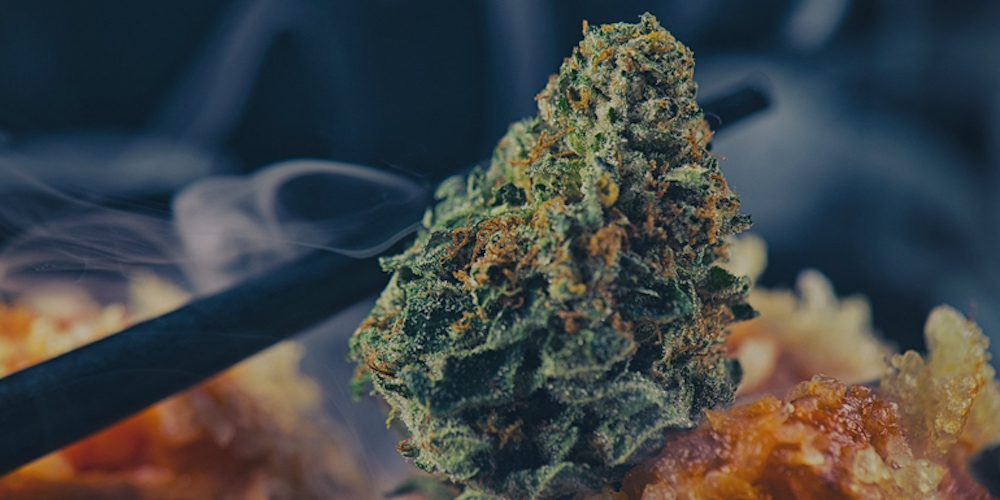 Gushers Strain: Cannabis Review