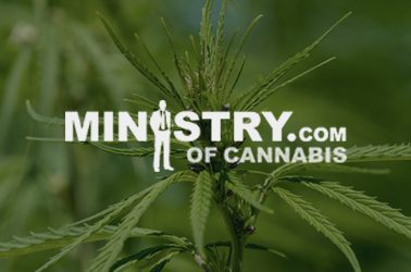 ministry US online seed bank