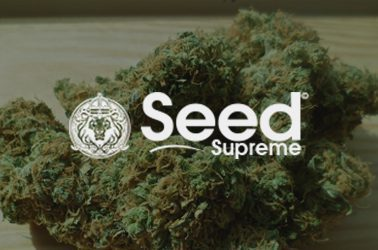 seed supreme US marijuana seeds