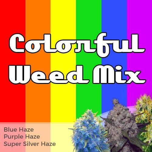 colorful weed mix seed pack