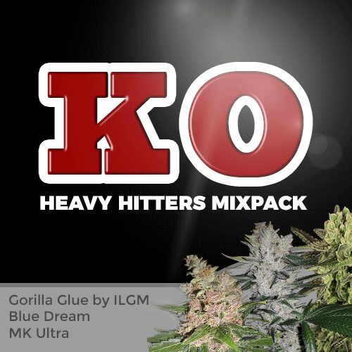 heavy hitters seed variety pack