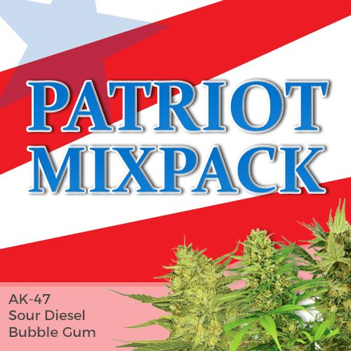 patriot mix seed variety pack